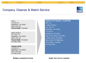 DnB Company Cleanse Match